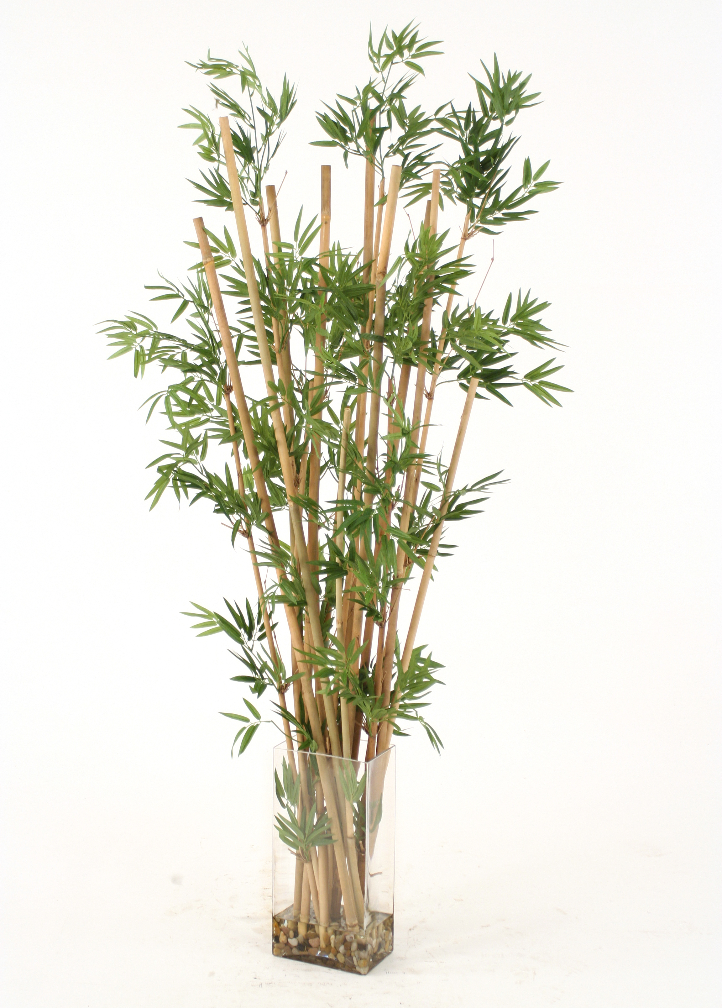 Waterlook faux leafy bamboo in a tall glass vase free for Faux bambou plante