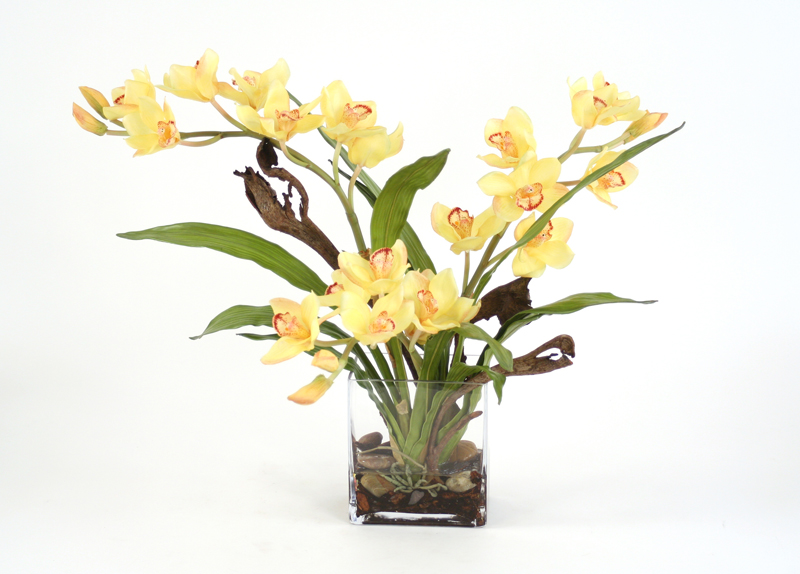 Waterlook silk yellow orchid plant with blades and natrag in a waterlook silk yellow orchid plant with blades and natrag in a rectangular clear vase mightylinksfo
