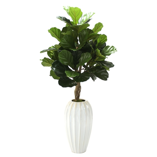 4 Fiddle Leaf Floor Plant In White Fluted Floor Vase
