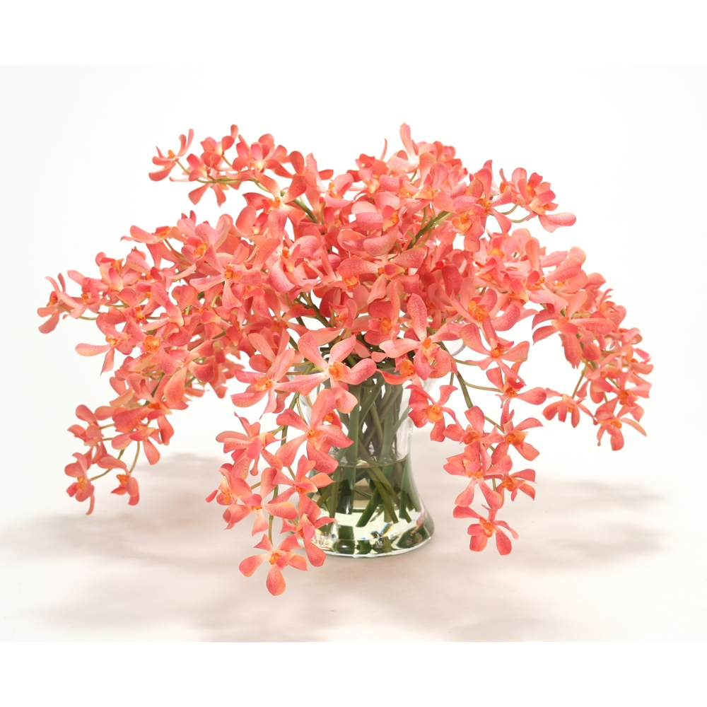 Coral Vanda Orchids In Hourglass Vase Free Shipping In