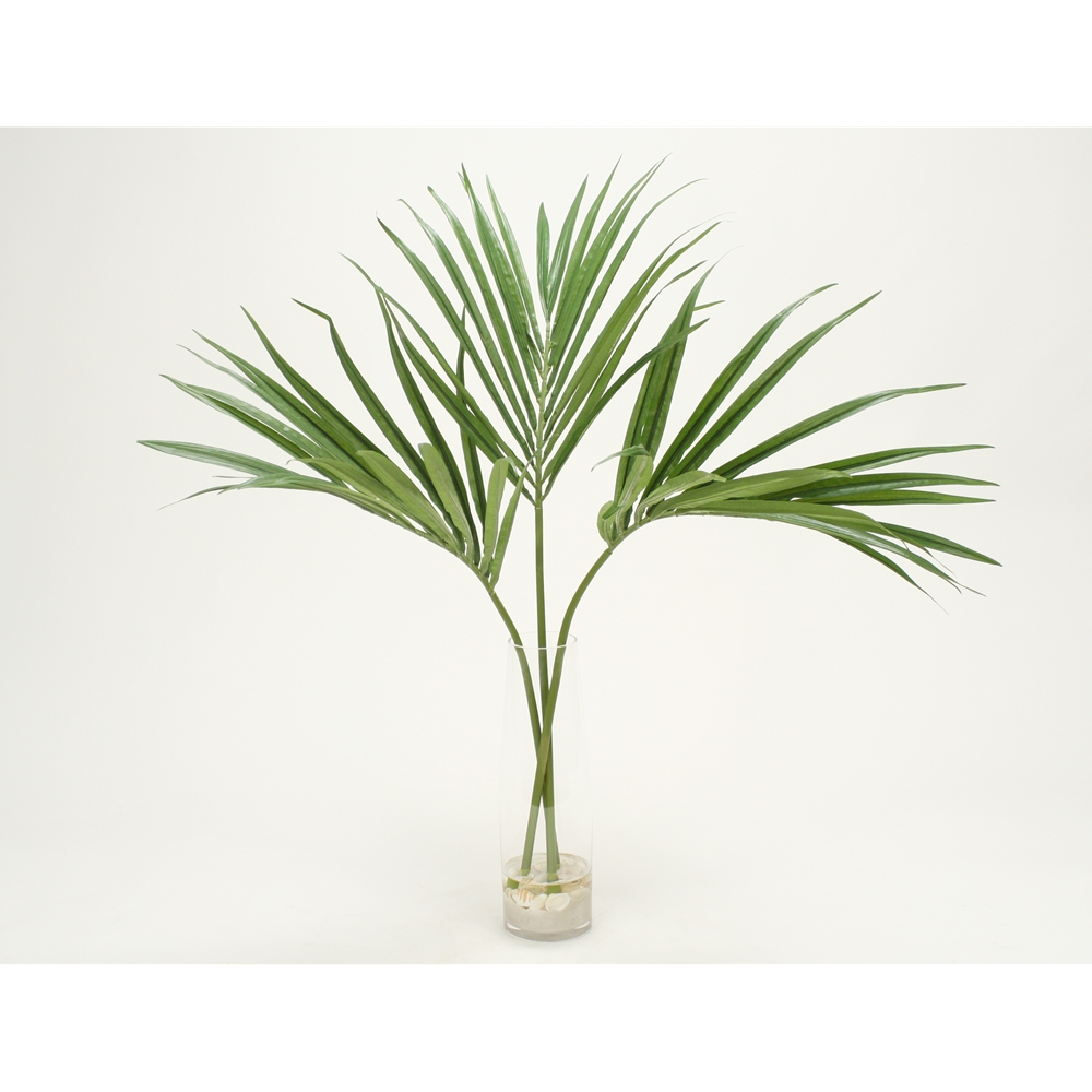Kentia Palm Fronds With Sand And Shells Clear Cylinder Vase Free Shipping In Usa 1001shops
