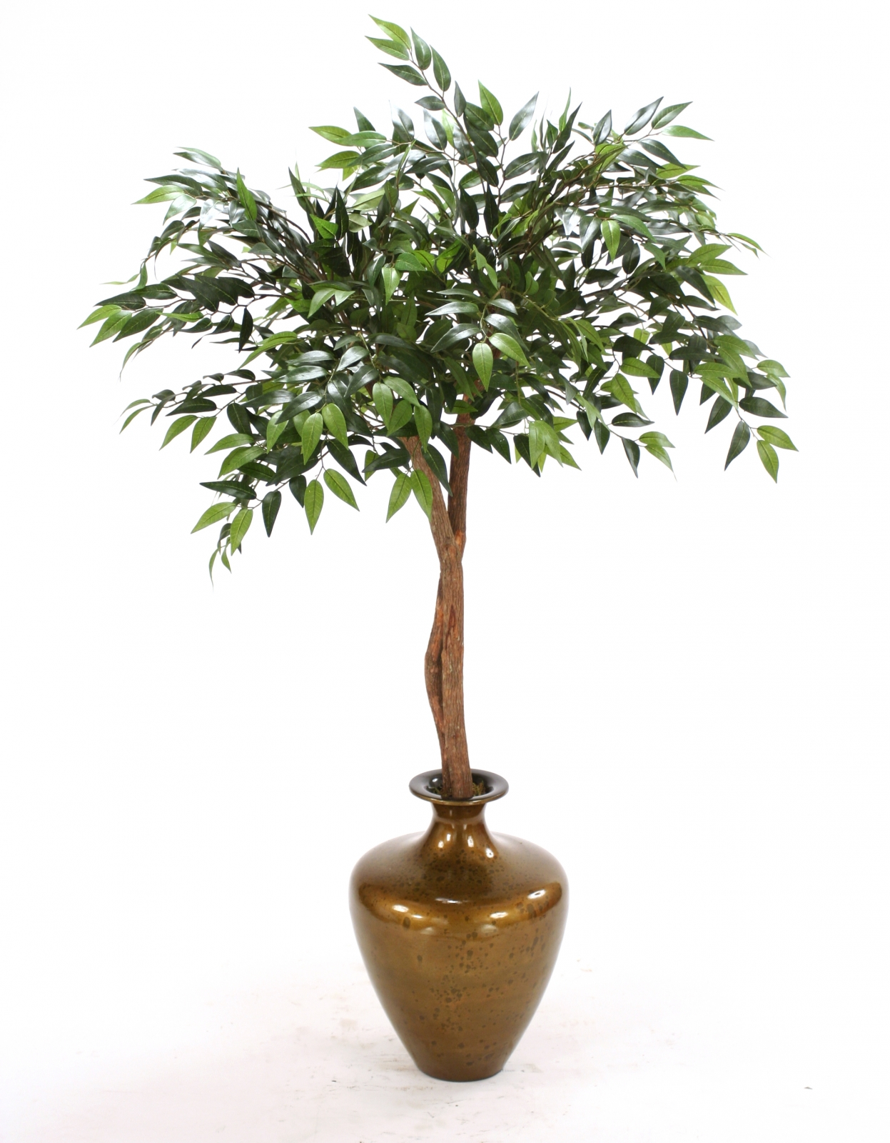 Silk Ruscus Canopy Floor Plant In Vase Free Shipping In