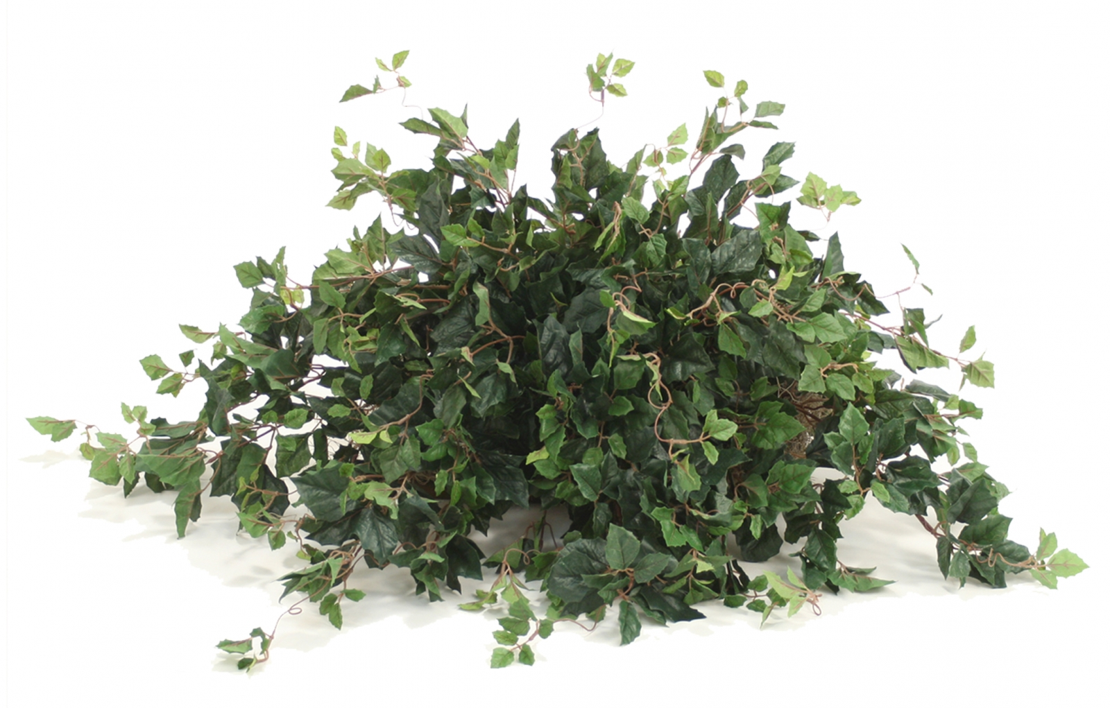 Topper with Silk Kangaroo Ivy Desk Top Plant on Tile ...