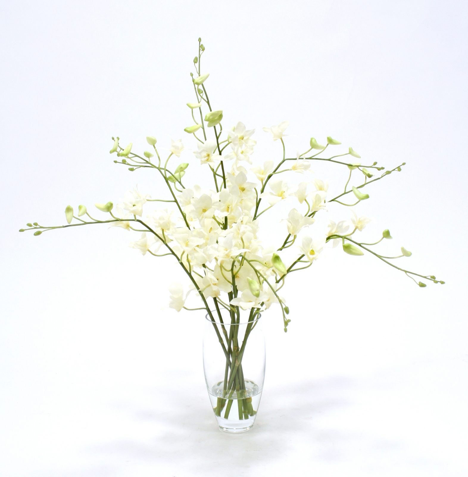 Waterlook Silk Orchids In Elliptical Glass Vase Free Shipping In
