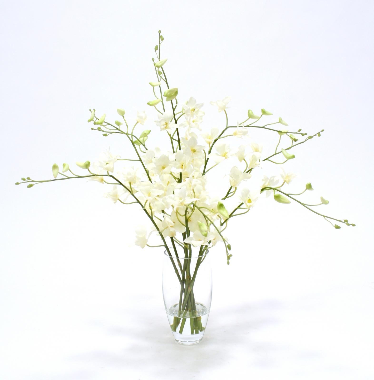 Waterlook silk orchids in elliptical glass vase free shipping in waterlook silk orchids in elliptical glass vase mightylinksfo