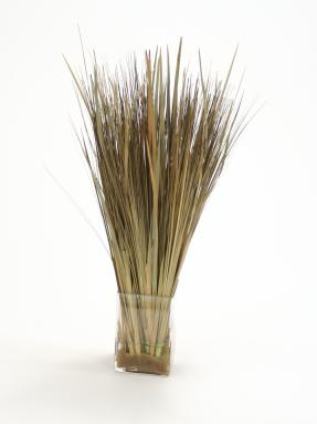 Waterlook ® Silk and Dried Natural Tan Brown Grass with Sand in a Glass Square