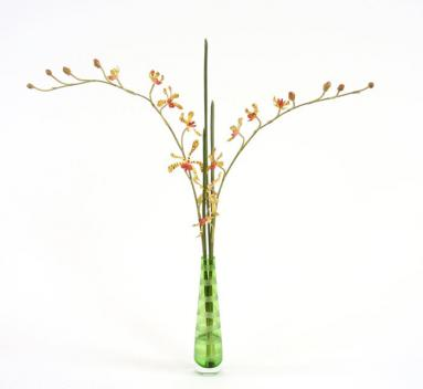 Waterlook ® Silk Gold Vanda Orchid in an Etched Green Bud Vase
