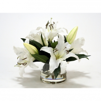 CREAM WHITE CASABLANCA LILIES IN CLEAR LOW ROUND GLASS CYLINDER