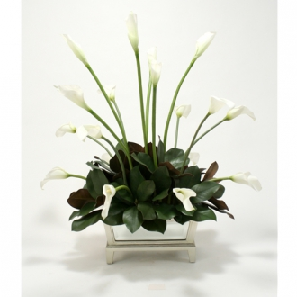 Cream-White Silk Calla Lilies, Magnolia Leaves in Mirrored Box