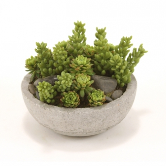 Faux Mixed Succulents and Stones in Concrete-Lite Bowl