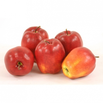 Fruit (Pack of 12) Delicious Red-Yellow Apples