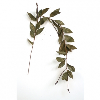 Garland - 5' Green with Gold Rubber Leaf Garland with Twigs and 31 Leaves