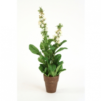 Silk Cream Lythrum Bush in Brown and Yellow Speckled Pot