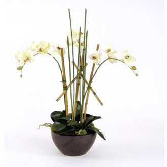 Silk Cream-Green Orchid Plants, Mondo Grass and Bamboo in a Black Metallic Bowl