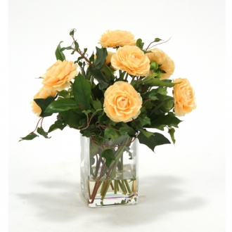 Waterlook ® Apricot Yellow Ranunculus with Ivy and Basil in Square Glass