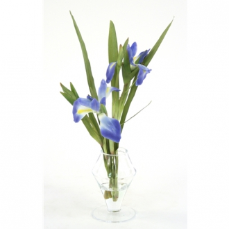 Waterlook ® Blue Iris in Glass Urn