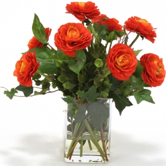 Waterlook ® Dark Orange Ranunculus with Ivy and Basil in Square Glass