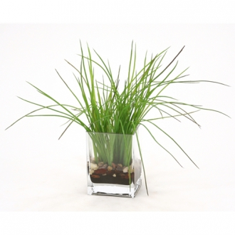 Waterlook ® Green Grass with Soil in Rectangular Glass