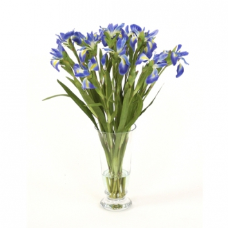 Waterlook ® Silk Blue Iris in a Footed Glass Vase
