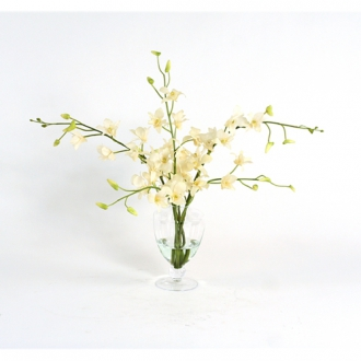 Waterlook ® Silk Cream-White Dendrobium Orchids in a Footed Glass Urn