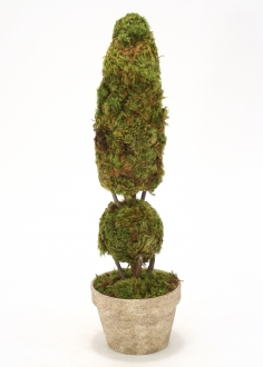 Cone and Ball Moss Topiary in Pot