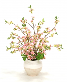 Pink Pear Blossoms in Vase