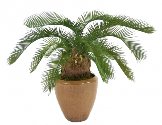 Silk Cycas Palm Floor Plant in Planter