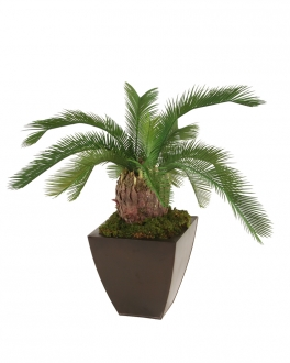 Silk Sago Palm Floor Plant in Planter