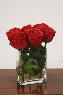 Waterlook (R) Red Roses in Clear Glass Vase