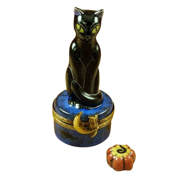 Black cat on night sky scene with removable pumpkin
