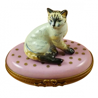 Cat on pink base