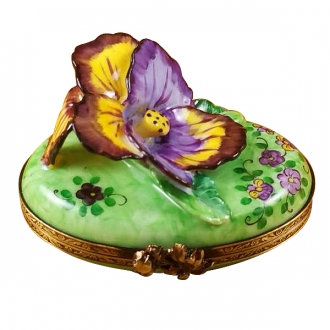 Pansy - purple & yellow
