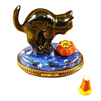 Cat Looking into Pumpkin with Removable Candy