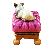 CAT ON PINK PILLOW