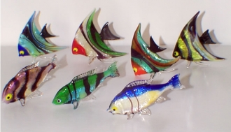 Colorful assortment Fish
