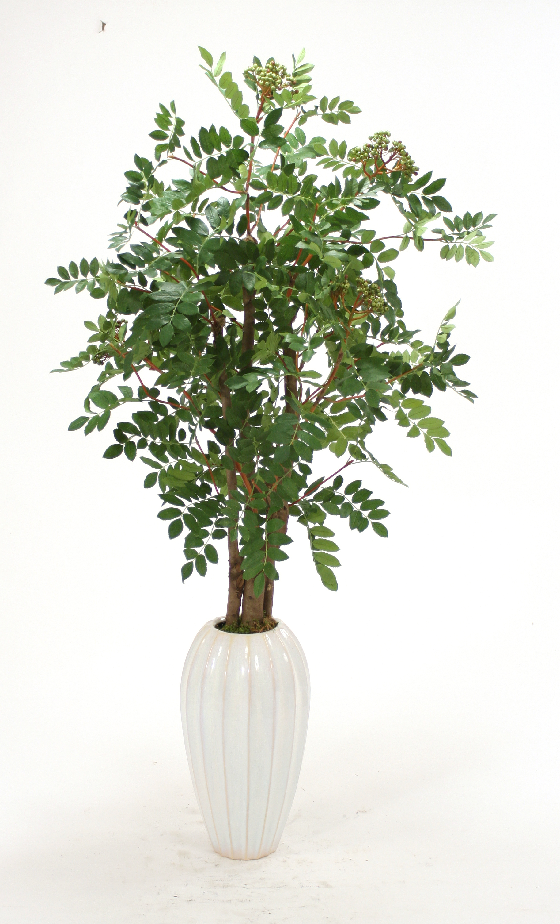 Silk Mountain Ash Floor Plant in Tall White Earthenware Vase