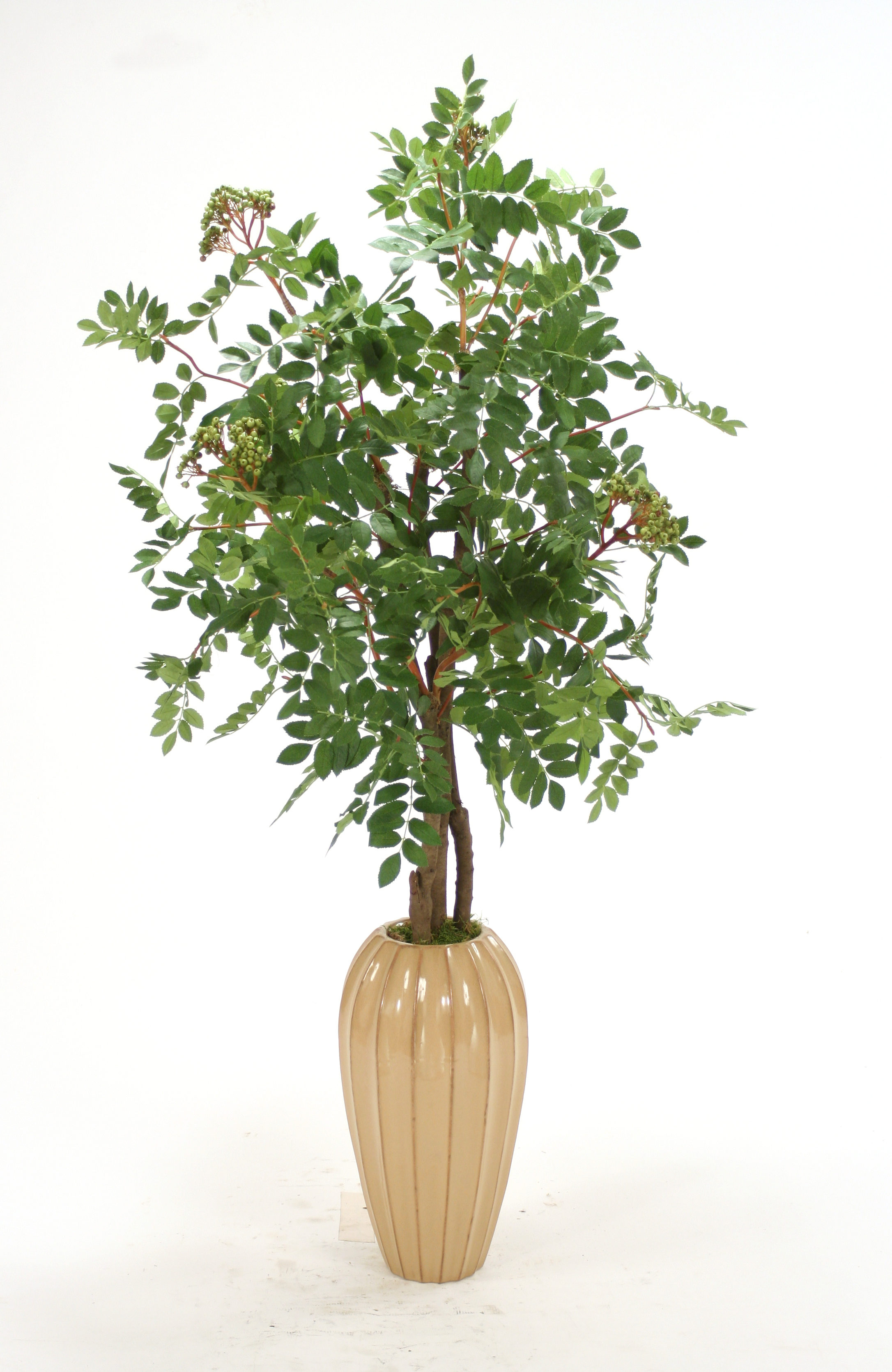 Silk Mountain Ash Floor Plant Tall Tan Earthenware Vase