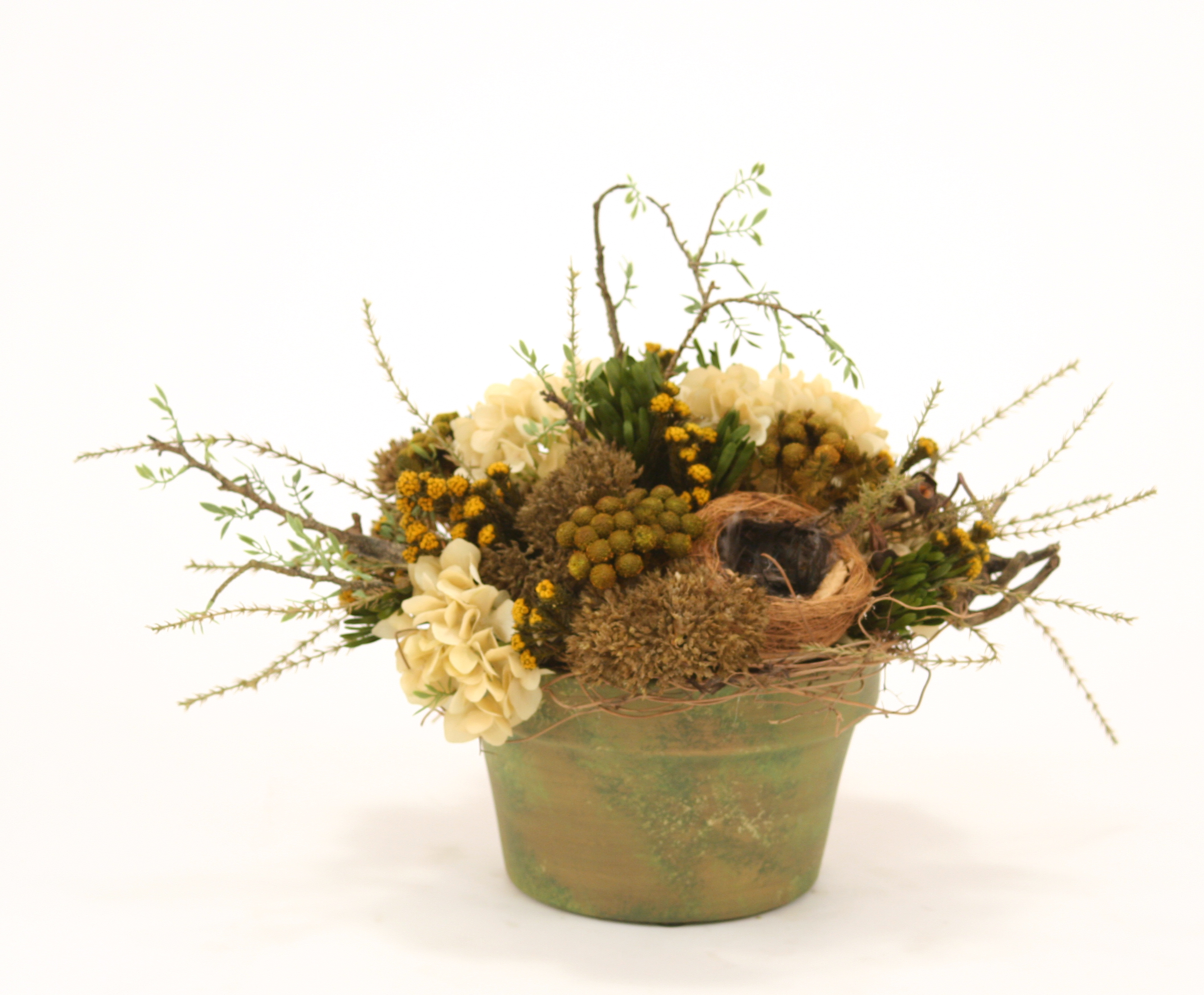 Dried Greenery Rustic Birds Nest Mix Wreathed With Honeysuckle