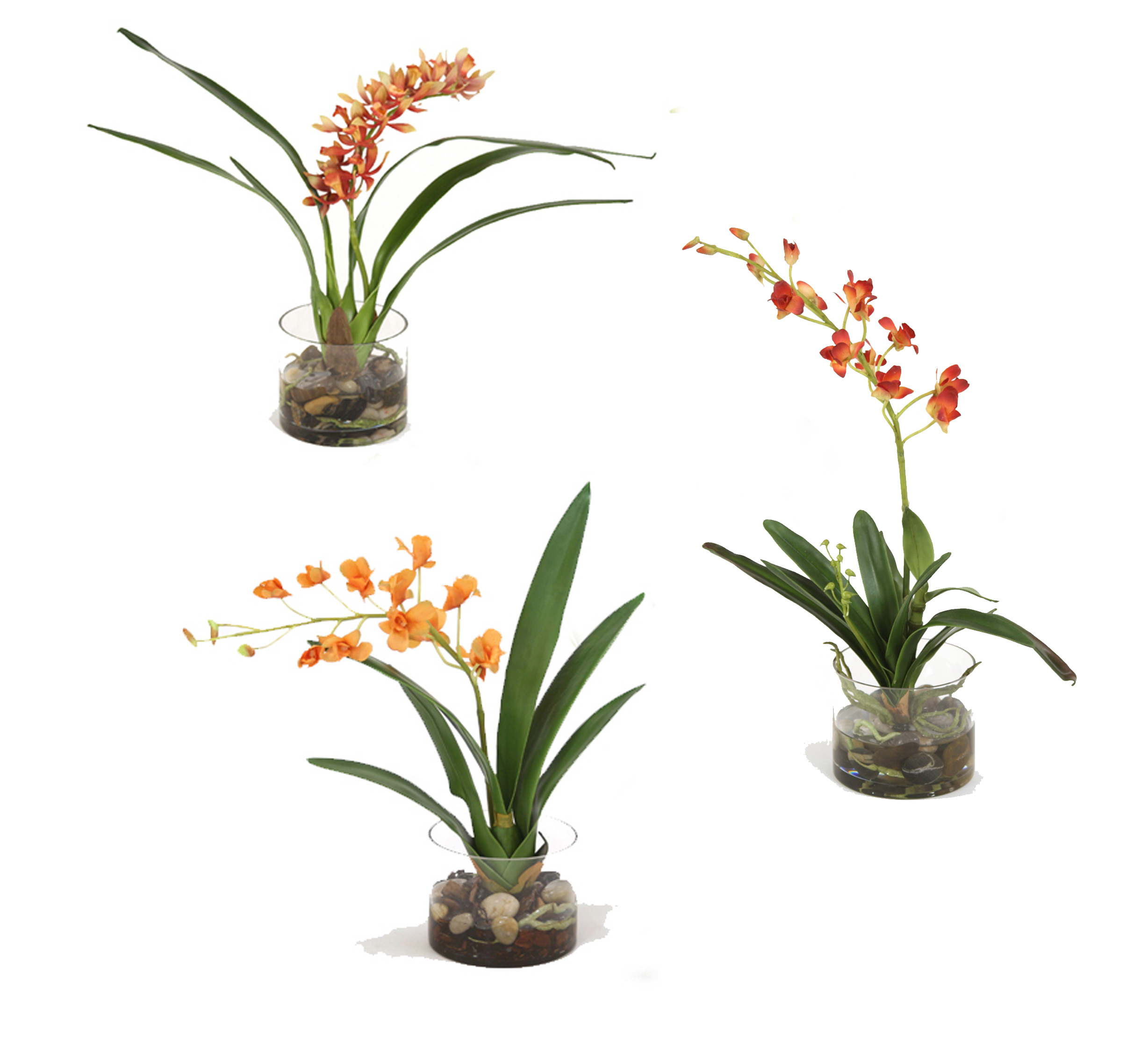 Assorted Silk Orchid Plants, Each in Glass Cylinder (Pack of 3)