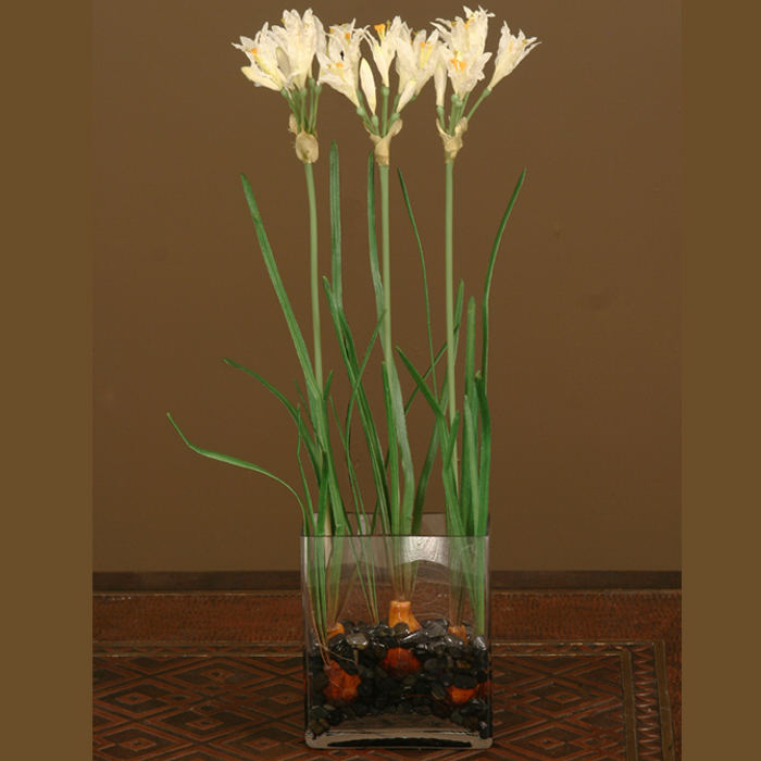 Waterlook ® Silk White Nerine Lily Bulbs in a Glass Vase