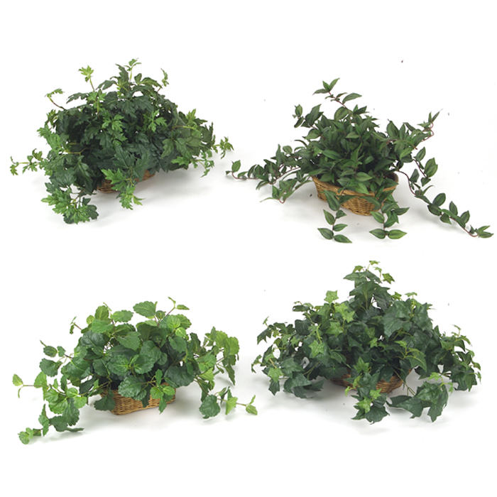 (Set of 4) Silk Ivy Assortment, Each in a Rectangular Shallow Tray Basket