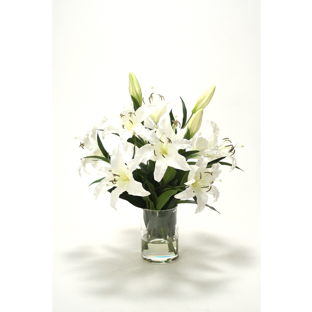 Casablanca Lilies In Glass Cylinder Vase Free Shipping In Usa