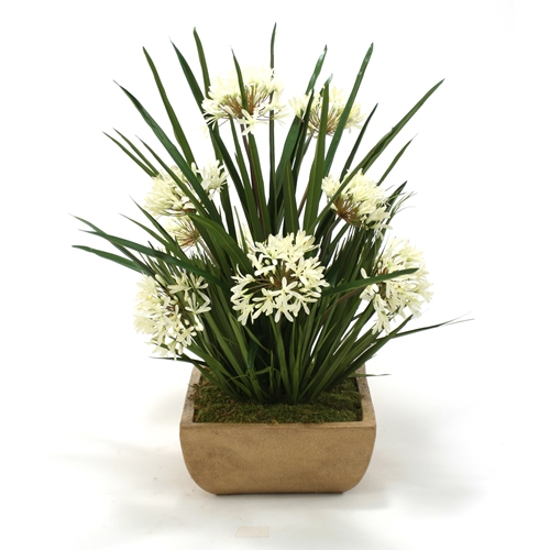 Cream White Agapanthus Mixed with Blade and Bulb Foliage in Honey Walnut Large Square Stone Tray