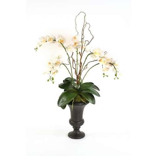Silk cream white phalaenopsis orchids with twigs in a small urn mightylinksfo