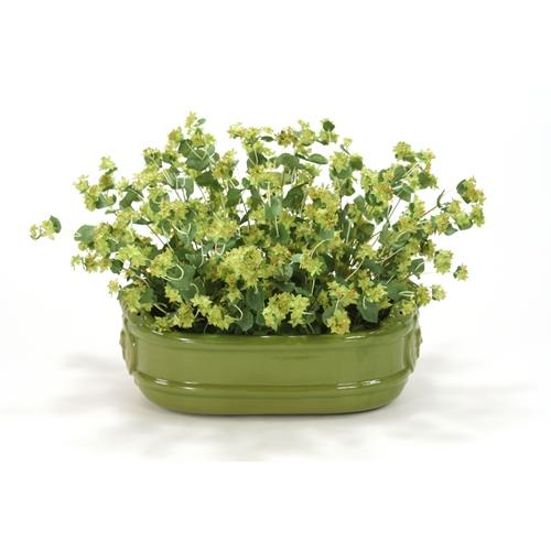 silk green bupleurum plant in a large oval lion head planter | free