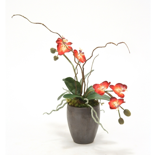 Silk Red Orchids With Curly Willow In Metallic Black Plum Pot Free