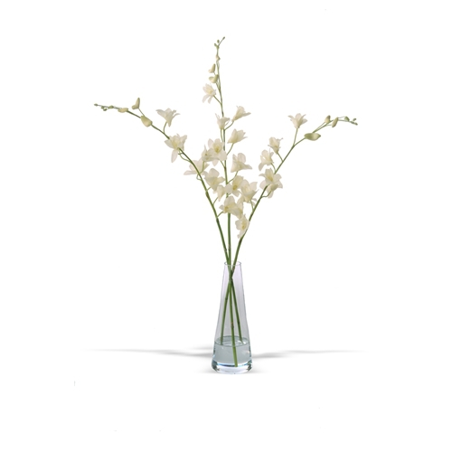 Waterlook Silk Cream White Orchids In A Tapered Glass Vase Free