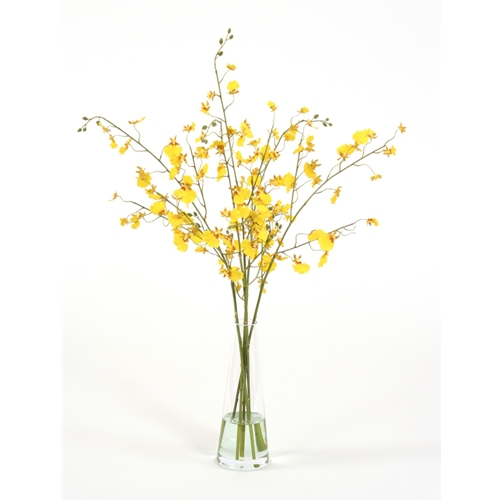 Waterlook Silk Gold Yellow Oncidium Orchids In A Glass Beaker Vase
