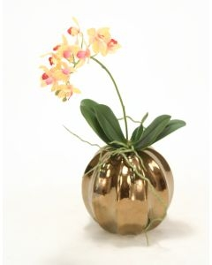 Rose Pink Cream Mini Orchid in Burnt Gold Ball Vase (min pack 2)