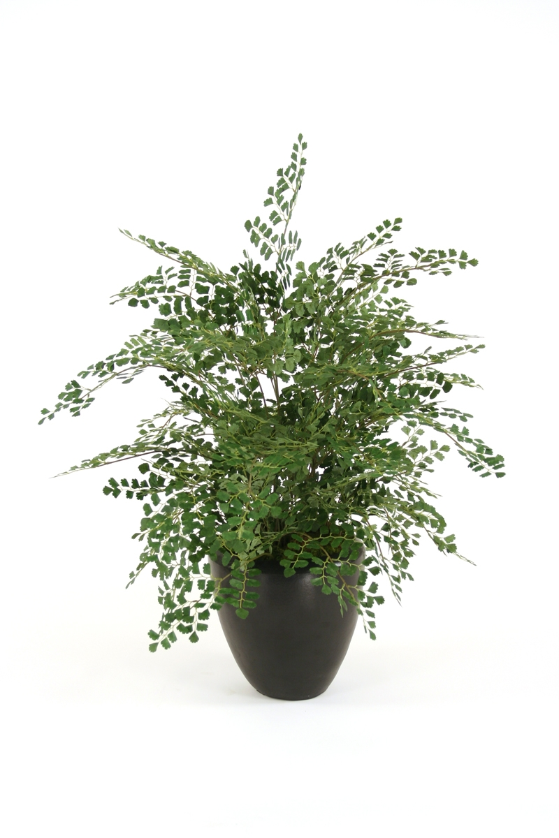 Silk Maidenhair Fern Floor Plant in Planter